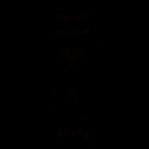 FE611055A